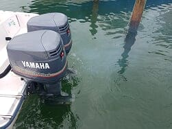 flush your outboard